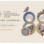 SPECIALE  FIERA DEL TARTUFO BIANCO D'ALBA